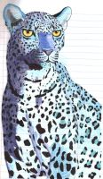 Blue Cheetah by moatswimmer-inugrl