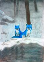 ice foxes by Foxxie-Angel