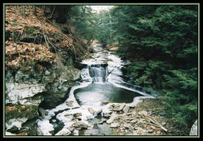 Waterfall Down the Road by Donohue