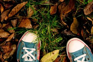 First step in autumn. by andrisanteodora