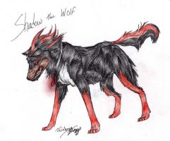 .2010. Shadow the Wolf by LindsayPrower