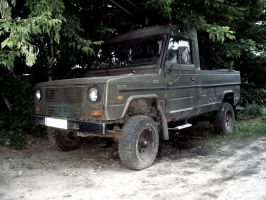 Offroad, Polish Style by Basstard79