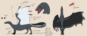 Reference Sheet by LauraBev