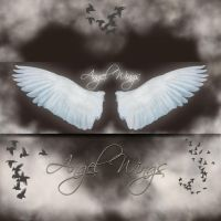 Angel Wings 1-2 by cocacolagirlie