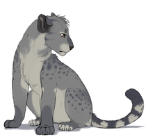 BigCat :AUCTION: by SilverPocky