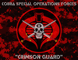 Cobra Spec Ops Banner by viperaviator