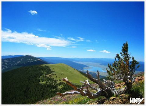 View From Baldy by hmaxkay