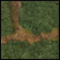 Forest Roads: Road Fork by YoSpeck