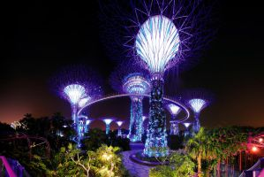 Gardens by the Bay v2 by inckurei