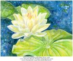 Water Lilies by Nicole-Marie-Walker