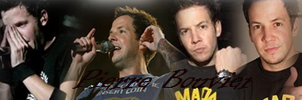 Pierre Bouvier Banner 2 by BeastWitch