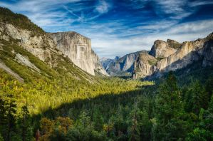 Autumn Tunnel View by JForbes1701