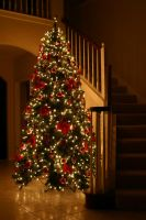 Christmas Tree 2004 by SmellsLikeDookie