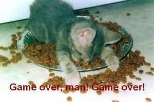 Game over, man Game over CAT by darkwestern