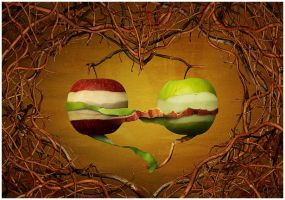 apples by yv