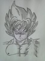 Goku, the super sayian by ZeroHunter112
