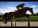 Wide oxers by Rosenhill