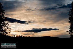 2 Trees And 3 Clouds Sunset by OrisTheDog