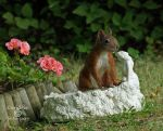 Squirrel 127 by Cundrie-la-Surziere