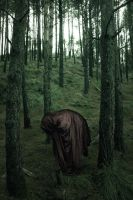 The lurking Spirit by Besaid