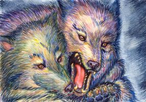 Wolfs full by OlesyaGavr