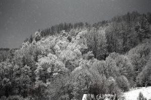 Winter 2012 HDR by piotrkol91
