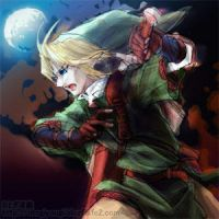 The Legend of Zelda by otogiyougi