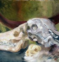 Skull Oil Painting Study by MikaF