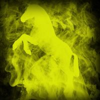 Yellow! fire !horse! by NocteBruti
