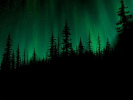 The Northen Lights by Angellore69