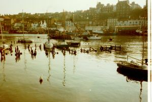 Whitby harbour by jynto