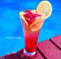 The Berry Sexy Cocktail by TipsyBartender