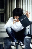 Death Note - The Mysterious Book by Adellexe