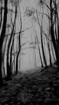 Ghostly Forest by MgcUsr