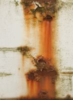 Rust Close-up by AGF81