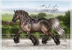 sVa Catelyn by sVa-BinaryStar