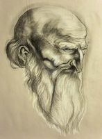 Master charcoal study! by ZombieWil