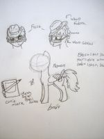 pony OC: Doodle Top by h2otothe650