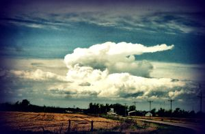 Thunderhead by akela9