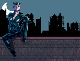 catwoman2 by Tolomuco