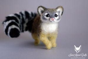 Cacomistle / Ring-tailed cat I by SaniAmaniCrafts