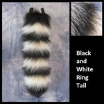 Black and White Ring Tail Commission by Lascivus-Lutra