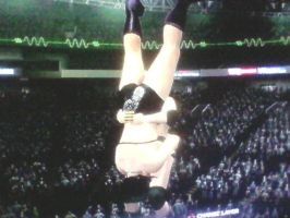 WWE '13: Picture Glitch by TheRumbleRoseNetwork