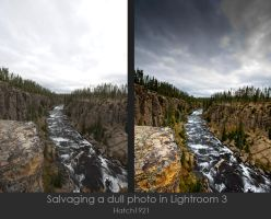 Lightroom saving dull photos by Hatch1921
