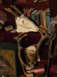Miniature skull and antlers by oingy-boingy