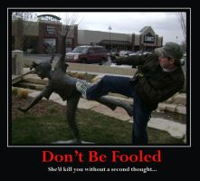Don't be fooled Demotivational by Coleslayer