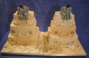 Twin Luggage cakes for Twins by Dragonsanddaffodils