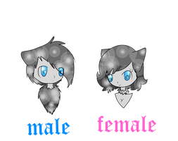 The diference between a male and a female Autaviae by BloomCat-Leslie