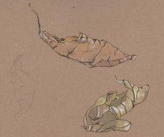 leaves by Vaines-polo
