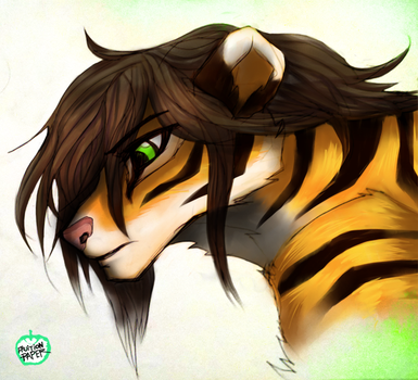 Tiger Color Practice by fruitionpaper